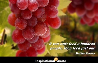 Mother Teresa – If you can't feed a hundred people, then feed just one