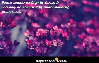 Albert Einstein – Peace cannot be kept by force; it can only be achieved by understanding