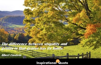 Albert Einstein – The difference between stupidity and genius is that genius has its limits
